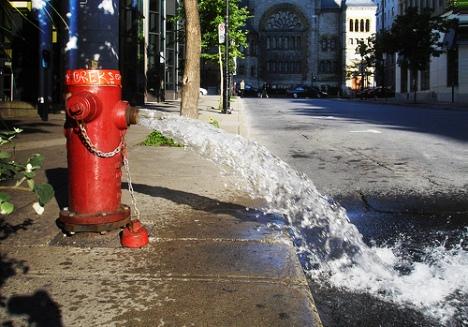 20090619-hydranthydrate.jpg