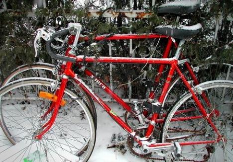 20091208-snowedin.JPG