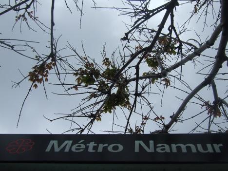 Namur1-20090610.jpg