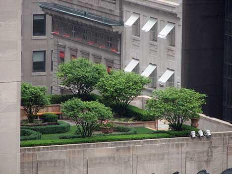 20070502_rooftop2.jpg