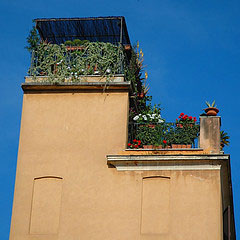 20070502_rooftopgarden.jpg