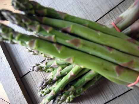 20070527_asparagus-stalks.jpg