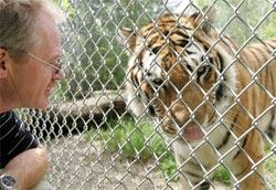 20070529_Boris-the-tiger.jpg