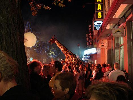 20080718_giraffe.jpg