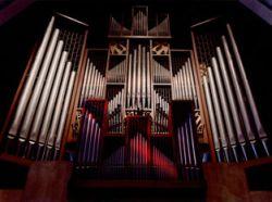 20080728_Organ1_Organs.jpg