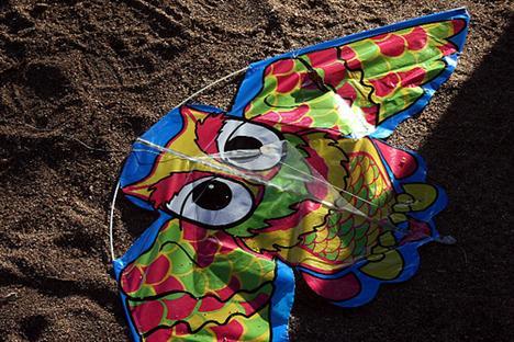 20080804_owlkite.jpg