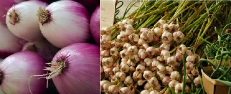 20100301_Onions and Garlic.jpg