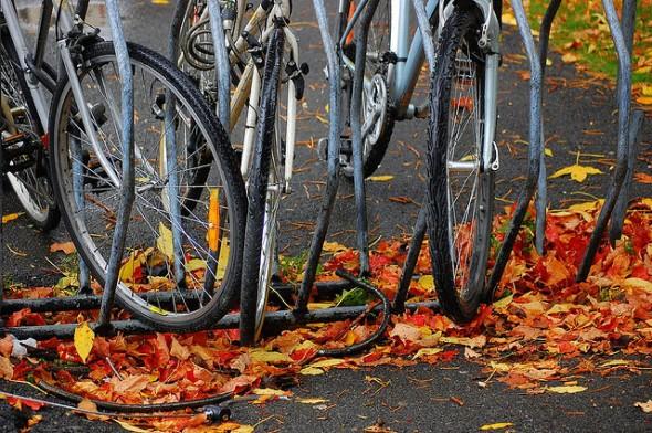 Autumn bicycles