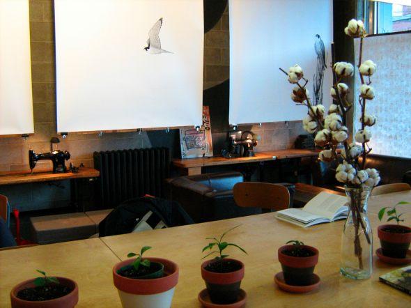 Cafe Le Falco