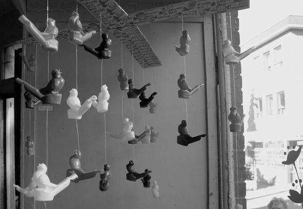 Montreal photography whistle music SXSW bird call