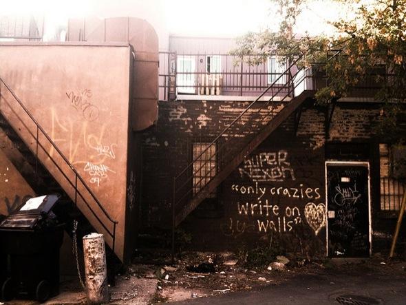 crazy,walls,graffiti,write,sun,light,dumpster